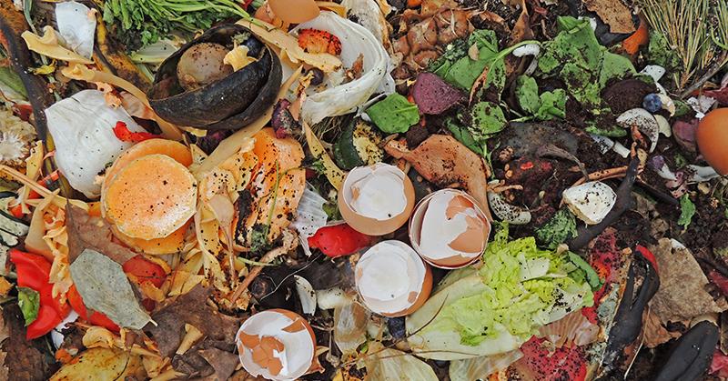 evitar o desperdício na cozinha