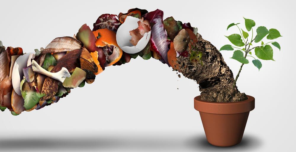 EcoBox: faça mágica com seu lixo orgânico