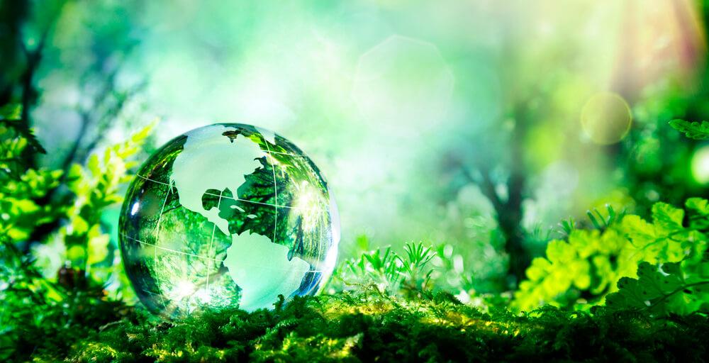 Dia Mundial da Terra: o que seu restaurante tem a ver com isso?