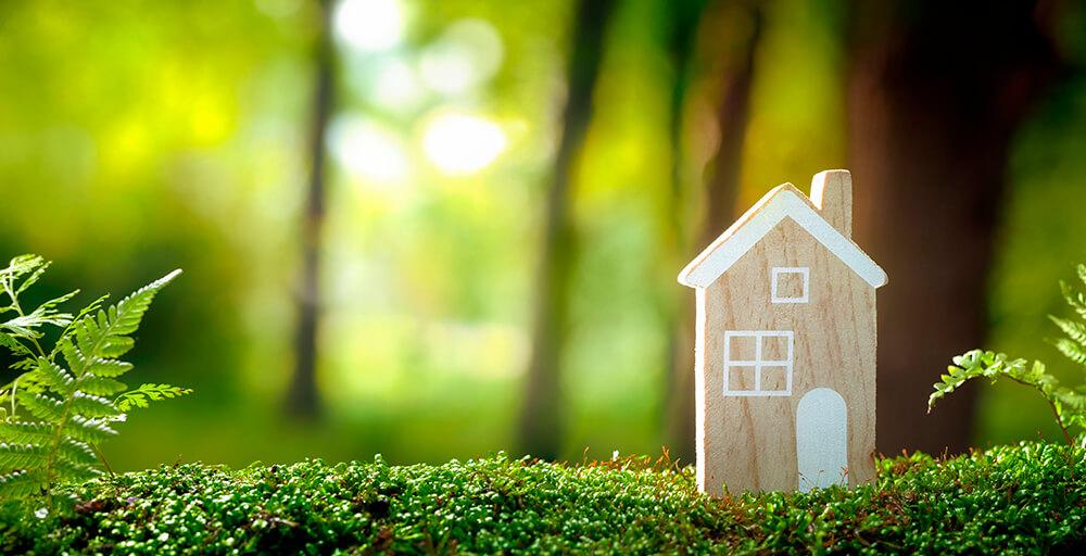 Sustentabilidade: como ajudar o planeta sem sair de casa!